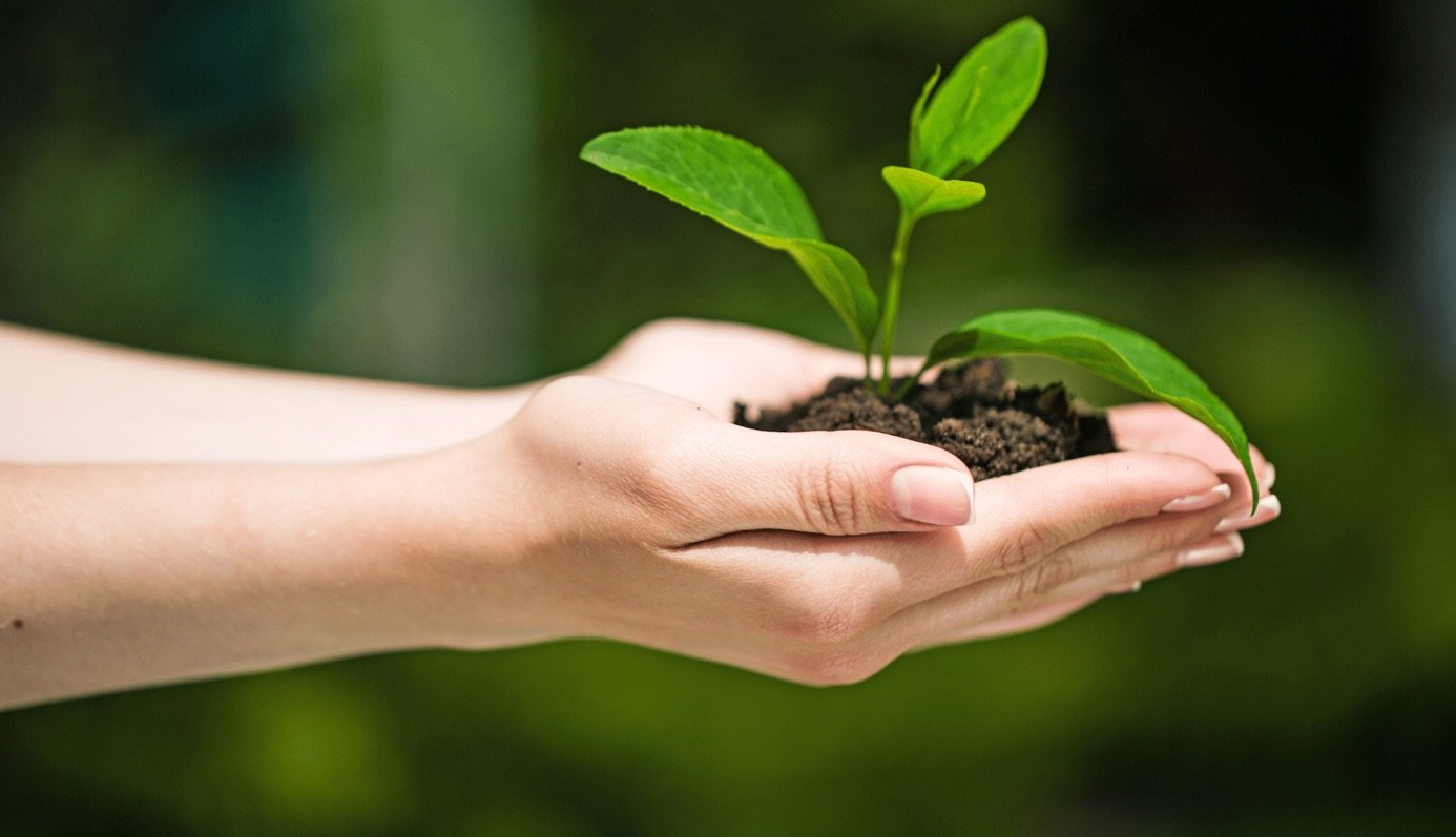 25 Noteworthy Resources for Sustainability from the Web